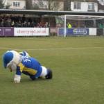 afc-wimbledon-mascot-595x446